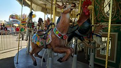 Carousel (kerry richardson) Tags: venturacountyfair carousel