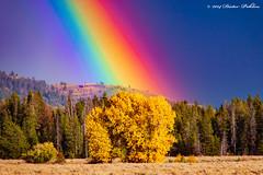 Herbst in den Grand Tetons (pohlenthe49er) Tags: usa wyoming jackson grand teton herbst regenbogen