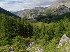 2018-09-16_9161773 © Sylvain Collet_DxO.jpg (sylvain.collet) Tags: mountains alpesdehauteprovence france wild montagne colmarslesalpes lacdallos nature