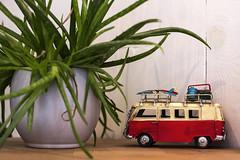 VW (hutsepot) Tags: vw volkswagen bus van transporter lieferwagen camionette toy speelgoed spielzeug jouet klein schaalmodel scalemodel model massstabmodell maquette small petit
