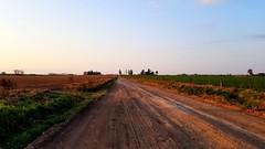 My Homeland - Mi Patria (Raúl Alejandro Rodríguez) Tags: campo countryside camino road unpaved cultivos crops la invencible provincia de buenos aires province argentina