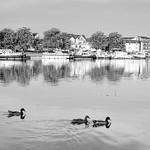 Auxerre thumbnail