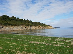 Maenporth, Cornwall. (christianiani) Tags: green seaweed beach sandy maenporth falmouth cornwall coastline beautiful sea shoreline sunny weather