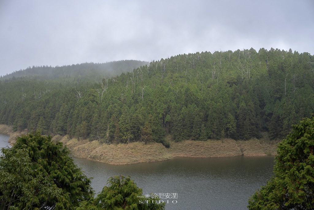 太平山翠峰湖環山步道 |走在泥濘的道路上,只為途中美景 | 宜蘭大同鄉12