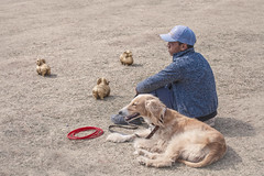 Boy and his Taigan (Тайган)  dog // Kyrgyzstan (Demipoulpe) Tags: