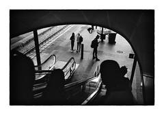 (The Peace Frog) Tags: leicam4p 35mmsummicronv4 fuji acros100 copenhagen denmark streetphotography film analogue bw blackandwhite