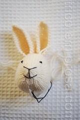 Coelhinha com vestido de bolinha (tricô em prosa) Tags: brinquedo toy knitting tricô knit tricot handknit feitoamão