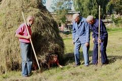 halloo! (regionaal landschap Schelde-Durme) Tags: waasmunster kinderen pdpo lia natuurbeleving hooiland speelnatuur landschap landbouw biodiversiteit samenwerken