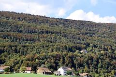 _DSC0357 Vuiteboeuf, Vaud, Suisse (Marie-Annick Vigne. + 1'000'000. Merci. Thanks) Tags: randonnée rando suisse vaud jura stecroix bullet chasseron