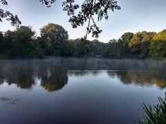 20180913 03 Groningen - Stadspark (Sjaak Kempe) Tags: 2018 autumn herfst september sjaak kempe sony dschx60v nederland netherlands niederlande groningen stad city stadspark park water reflection reflections morning fog ochtendmist mist