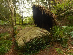 DSCN5581 (norwin_galdiar) Tags: bretagne brittany breizh finistere monts darrée nature landscape paysage