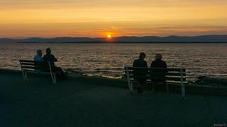 Sunset -  Admiration du coucher de soleil, P.Q., Canada - 7796