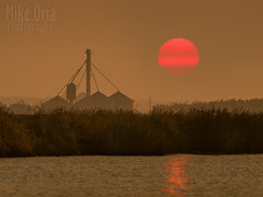 from Sycamore Slough (mikeSF_) Tags: california lodi delta mikeoria wwwmikeoriacom sun solar sunrise morning river mokelumne glasscock mikeoriaphotography copyright terminous slough sycamoreslough sycamore dairy tower silo