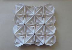 Surrograte tessellation - Alessandra Lamio (Monika Hankova) Tags: origami tessellation alessanda lamio