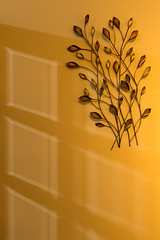 'Embellished' (Canadapt) Tags: wall embellishment reflection shadow yellow forres scotland canadapt