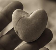 stone (3OPAHA) Tags: rock stone heart hmm macromondays sony