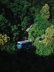 The ascent   P2250829 (mkreibohm) Tags: schweiz swizerland tessin ticino funicolare railway car wagon funicular slope steep mountain mountainous alps blue forest trees lush sunny shadows light summer olympus olympusomdem1 micro43 microfourthirds sun vintage hill hilly street urban nature plants vegetation flora leaves
