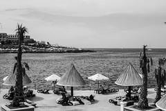 Northern spring revisited - Seafront at the Westin Dragonara (David Redfearn) Tags: malta stjulians westindragonara