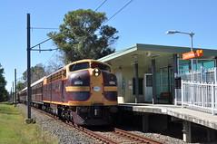 East Richmond (highplains68) Tags: aus australia nsw newsouthwales richmondline 42103 4204 lachlanvalleyrailway shuttles tour eastrichmond