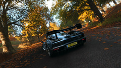 Down By The Woods Today (Mr. Pebb) Tags: british brit uk greatbritain britain woods tree trees autumn videogame racinggame racegame road car hypercar supercar trackdaycar trackcar twoseater twodoor 2door 2seater mclaren senna rwd rearwheeldrive midengined midengine v8 videogamecapture forza forzaseries forzahorizon4 fh4 turn10studios ms playgroundgames t10 microsoftstudios microsoft xbox turn10 xboxone xboxonex 4k 4kgaming scenery landscapeformat landscapemode landscape rear shadows shadow day daytime still stillshot stillimage stillpicture stock stockshot photomode 169 3840x2160 4kpicture 4kimage 4kshot pg screencapture screenshot leaf leafs