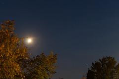 Jupiter & Moon / @ 35 mm / 2018-08-18 (astrofreak81) Tags: jupiter moon luna mond planet stars tree light night sky dark konjunktion konstellation dresden 20180818
