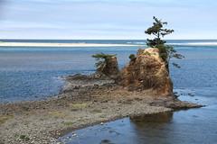 Siletz Bay, Oregon (jlcummins - Washington State) Tags: oregon oregoncoast pacificocean pacificnorthwest ocean water