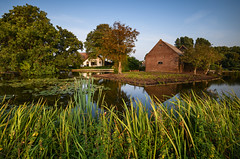 Evening in Groene Jonker (Julysha) Tags: groenejonker evening august summer 2018 acr thenetherlands farm pond grass d850 nikkor1635vr nikon tiffenhtndgrad countryside groenehaart