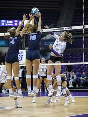 UW San Diego-FT4I0107 (Pacific Northwest Volleyball Photography) Tags: volleyball ncaa washington sandiego