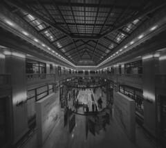 The Railway Exchange Building / Santa Fe Building (Jovan Jimenez) Tags: the railway exchange building santa fe black white gray interior chicago 12mm zeiss touit distagon lines architecture sony alpha a6500 6500 ilce f28 monochrome monochromatic gigpixel giga pixel pro autopano autopanopro kolor ohc2017