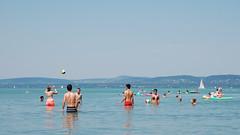 .daily Balaton (Bartosz Wojtalewicz Photography) Tags: hungary balaton lake summer wateractivities węgry jezioro wakacje