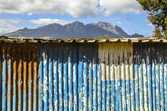 Kayamandi, Western Cape, South Africa: Majestic Roof (rocinante11) Tags: kayamandi stellenbosch southafrica blue corrugated metal roof view