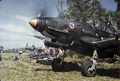Ju 87 JEC 00564 (ww2color.com) Tags: junkers ju87 stuka luftwaffe