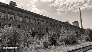 Abandoned old Linoleum Factory in Germany (likolit)