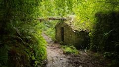 Along the Camino Primitivo between Grado and Salas (Randy Durrum) Tags: camino primitivo spain trail mud muddy de santiago tree house durrum samsung s9 grado salas