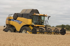 New Holland CX8070 Combine Harvester cutting Winter Wheat (Shane Casey CK25) Tags: new holland cx8070 combine harvester cutting winter wheat yellow cnh nh castletownroche newholland grain harvest grain2018 grain18 harvest2018 harvest18 corn2018 corn crop tillage crops cereal cereals golden straw dust chaff county cork ireland irish farm farmer farming agri agriculture contractor field ground soil earth work working horse power horsepower hp pull pulling cut knife blade blades machine machinery collect collecting mähdrescher cosechadora moissonneusebatteuse kombajny zbożowe kombajn maaidorser mietitrebbia nikon d7200