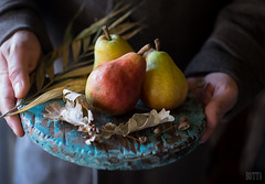 pears (beppelena) Tags: foodphotography foodstyling food fruit pear plate rustic sigma sigma35mmart hand