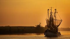 Heimkehr in den Hafen.jpg (Knipser31405) Tags: 2018 ostfriesland niedersachsen krabbenkutter krummhörn greetsiel nordsee frühjahr