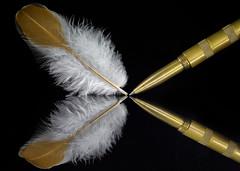 Ruffling Feathers (KellarW) Tags: hard zadiesmith writing definingbeauty beauty ruffled macromondays ruffling feather creativity onblack soft pen white macro brown writer brass onwriting brushedmetal