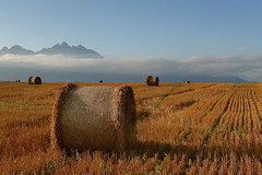 Evening 1 (tatranka7) Tags: landscape mountain summer field sky clouds light shadows evening