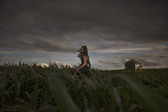 Going Home ({jessica drossin}) Tags: jessicadrossin rural farm house abandoned corn field nebraska alone girl woman teen dress black green plants summer country wwwjessicadrossincom clouds storm eerie wind blowing hair eye