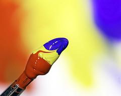 Painting a rainbow (kunstschieter) Tags: multicolor macromondays red yellow blue brush hmm