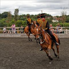 Royal Horse Artillery Ride VIII (meniscuslens) Tags: royal horse artillery horses hounds heroes event charity buckinghamshire aylesbury high wycombe princes risborough uniform soldier arena