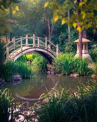 Bridge Reflection (patkelley3) Tags: bridge reflection garden tea leaves summer sunset light