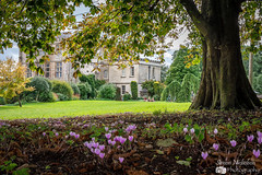 Newark house (Simon Nicholson Photography) Tags: house mansion newark nationaltrust tree cotswolds flowers nikon sigma