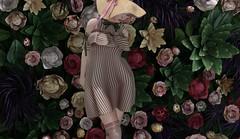 fleurs de jardin (Tympany) Tags: