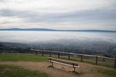 DSC_0246 (Sagahstoomeh) Tags: red alum rock fpark park fog green san jose sf bay area francisco ca california county santa clara parks hiking hills mountains