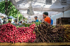 Fort Greene Farmers' Market (Phil Roeder) Tags: newyorkcity brooklyn nyc fortgreene farmersmarket leicax2 leica