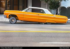 egg yellow impala (eraneran70) Tags: eran bendheim nyc car chevy impala hiphop groove streets ride tamron 70300mm