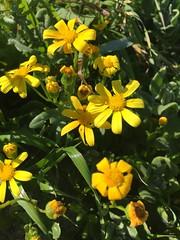 42ceaef5-1771-496f-a378-5ac0b020adba