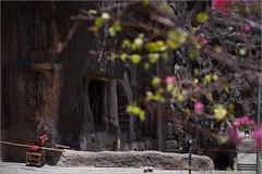 untitled, ajanta (nevil zaveri (thank U for 15M views:)) Tags: zaveri ajanta caves unesco world heritage maharashtra india photography photographer images photos blog stockimages photograph photographs rockcut basalt aetrip interior carving nevil rocks nevilzaveri stock photo column design pink architecture exterior landscape bougainvillea flowers tourist chair handicap conceptual